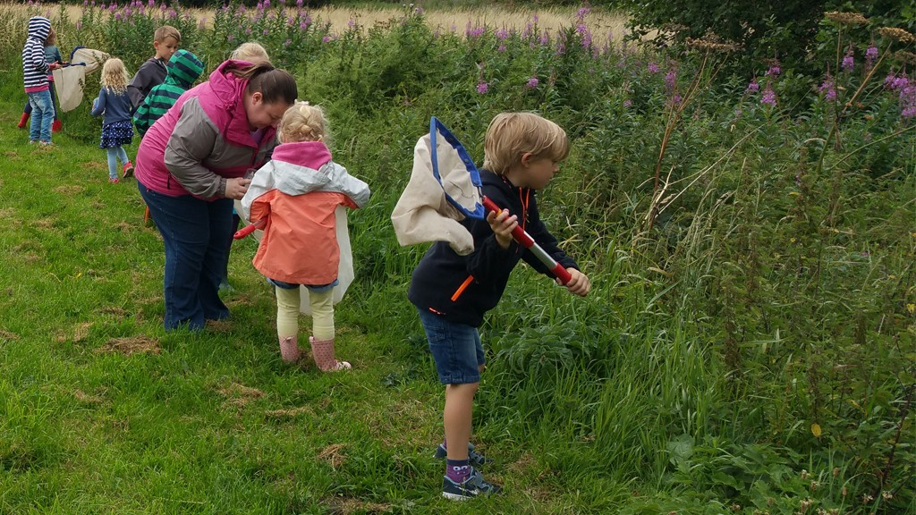 Staffordshire Wildlife Walk in Uttoxeter July 2015 - 2 - Heath Big Local